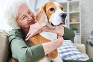 animaux domestiques pour les seniors